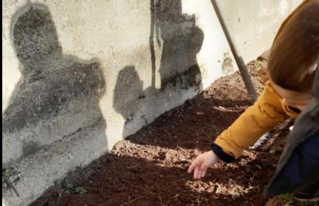 Les petits jardiniers de l'école Saint Pierre